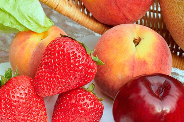 tranporte fruta europa laytortrans